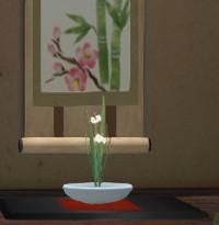 茶花のスイセン